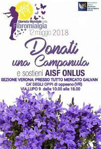 AISF Verona