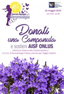 Volantino AISF1